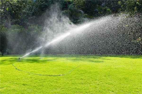梦见灌溉浇水浇地
