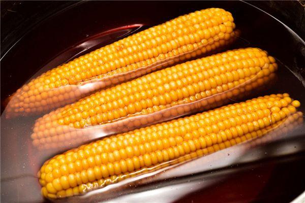 梦见煮玉米