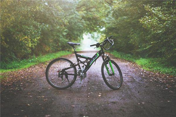 梦见买自行车