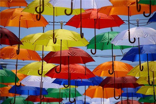 梦见很多雨伞