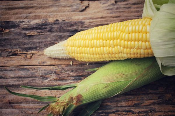梦见一堆玉米