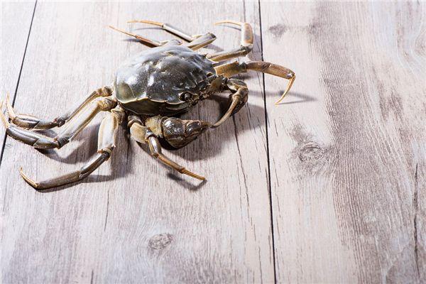 梦见螃蟹夹手