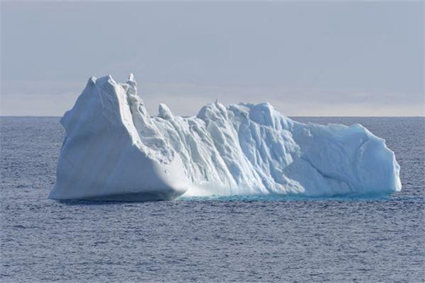 梦见自己在北极