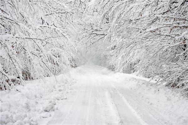 梦见山区下大雪