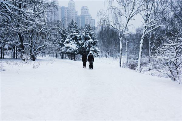 梦见一片雪地