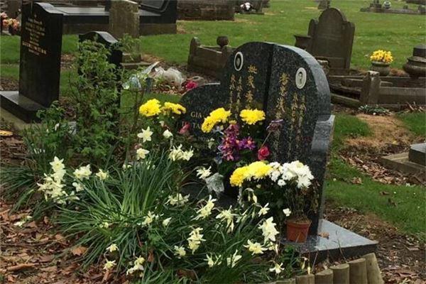 梦见坟墓上长花