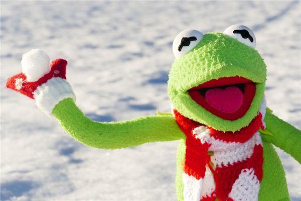 梦见打雪仗是什么意思