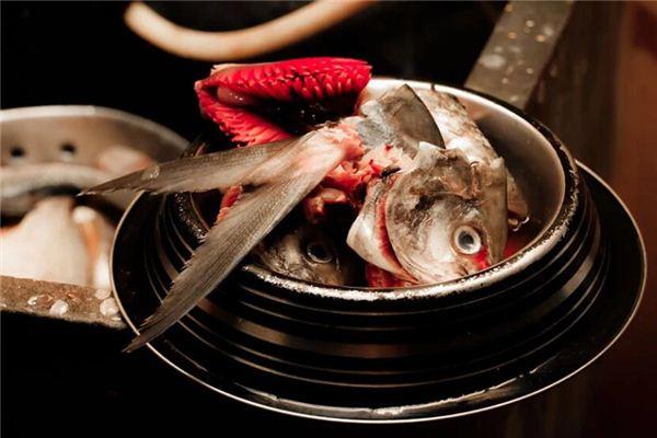 夢見殺魚是什么意思