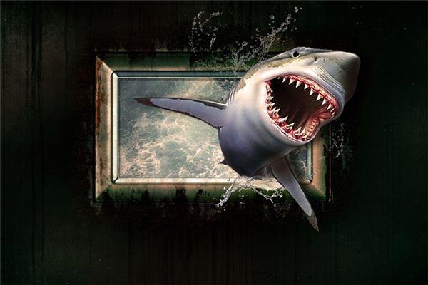 梦见鲨鱼是什么意思