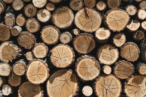 梦见木桩是什么意思
