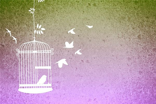 梦见鸟笼是什么意思