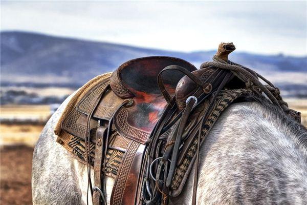 梦见马鞍是什么意思