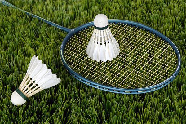 梦见羽毛球是什么意思