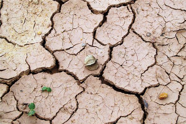 梦见泥土是什么意思
