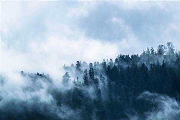 夢見霧是什么意思