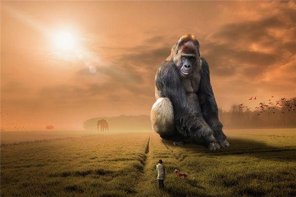 梦见猩猩是什么意思