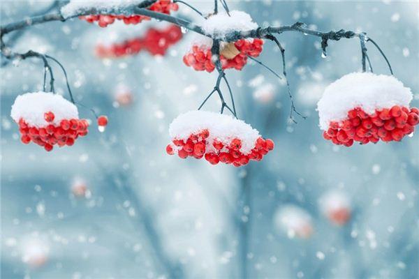 做梦梦到下雪