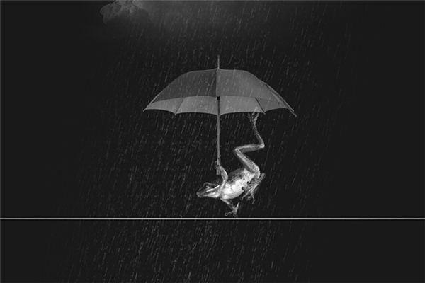 梦见暴雨是什么意思
