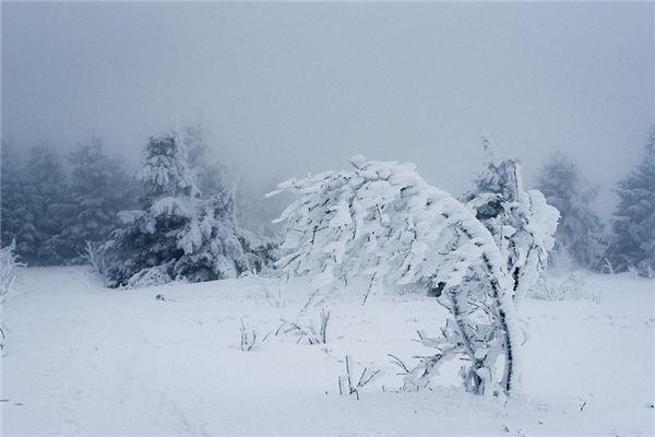 夢見暴風雪是什么意思