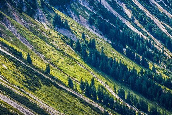 梦见斜坡是什么意思