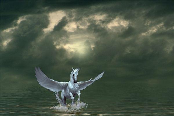 梦见飞马是什么意思