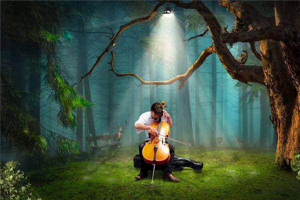 梦见大提琴是什么意思