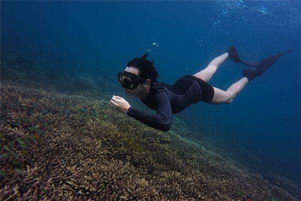梦见潜水是什么意思