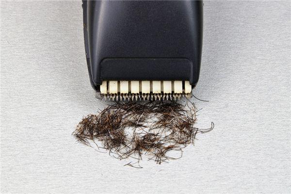 梦见剃毛是什么意思