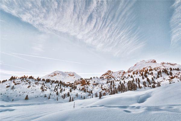梦见白雪是什么意思