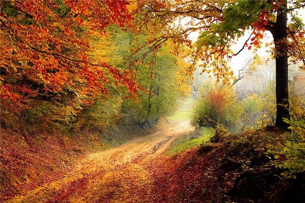 梦见秋季是什么意思