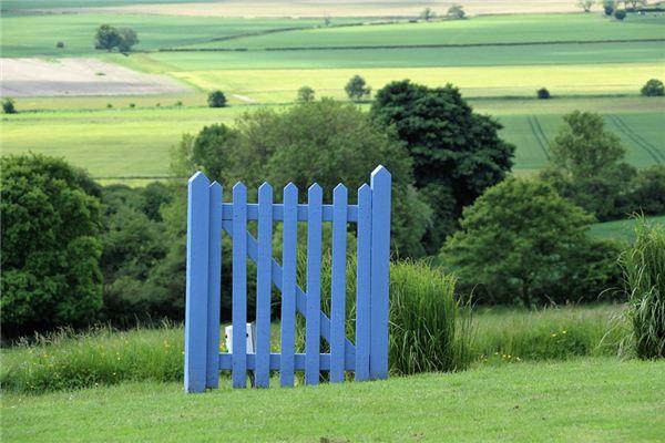 梦见树篱是什么意思