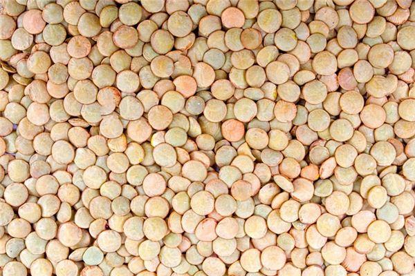 梦见小扁豆是什么意思
