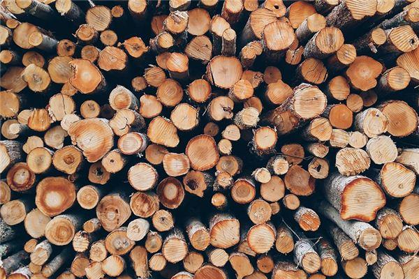 梦见一捆柴是什么意思