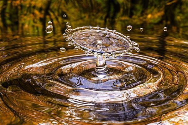 梦见很多水是什么预兆