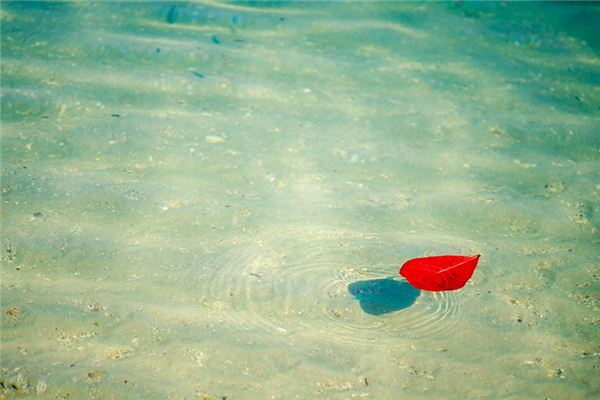 梦见水上漂是什么意思