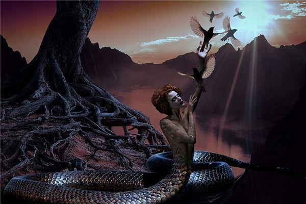 梦见蛇变人是什么意思
