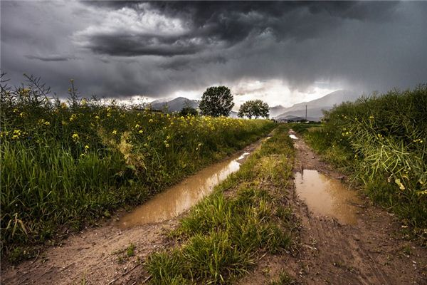 梦见泥泞路是什么意思