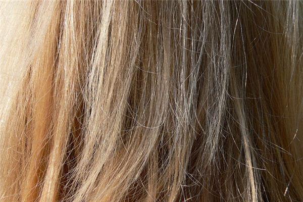 梦见掉头发是什么征兆