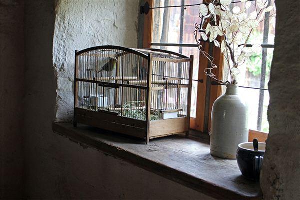 梦见笼中之鸟是什么意思