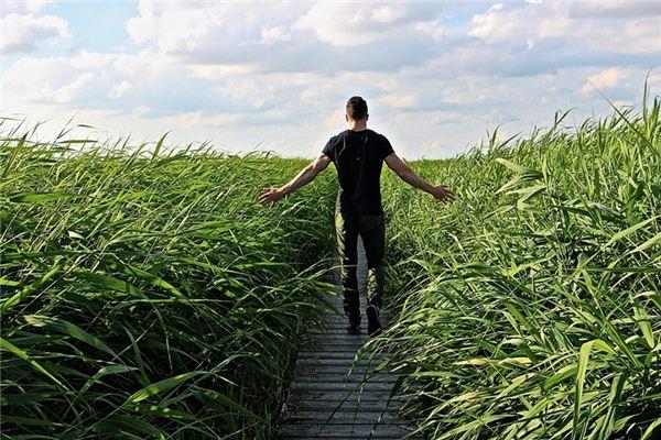 梦见逆风步行是什么意思