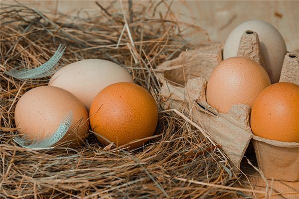 梦见捡到鸡蛋是什么预兆