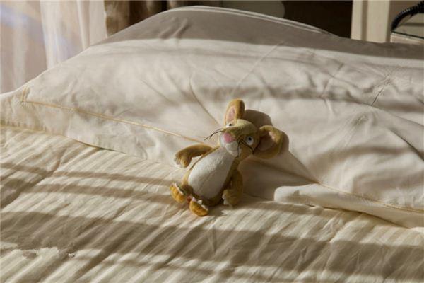梦见床上有老鼠