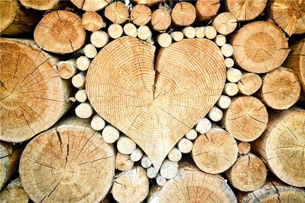 五行中属木的字有哪些?