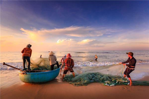 梦见用网捞鱼