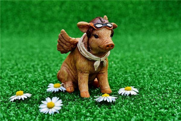1995年属猪的是什么命