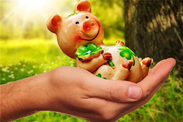 生肖猪出生年份表