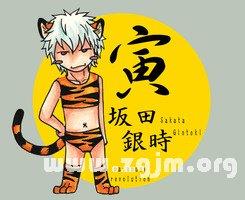 虎年是哪年 属虎的年份