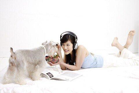 大奖娱乐平台宠物