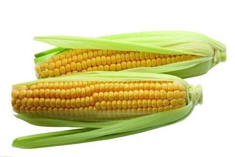 夢見玉米 包谷