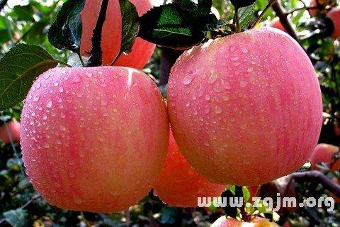 庄闲游戏苹果